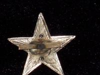 Единый знак на головной убор для сотрудников внутренних дел 1920гг. (копия)