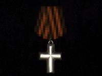 Крест «За степной поход» (копия)