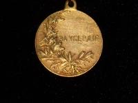медаль За усердие Николай II (копия)