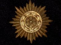 Награда для восточных народов 1 класса (копия)