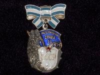 орден Материнская слава II степени (копия)
