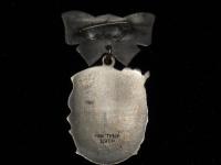 орден Материнская слава III степени (копия)