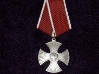 Орден Мужества (копия)