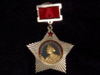 орден Суворова I ст. подвесной (копия)