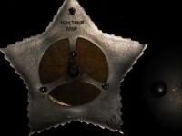 Орден Суворова I степени (копия)