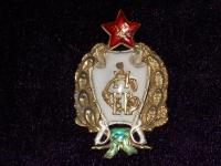 знак 1-е советские кавалерийские Петроградские командные курсы. 20-е гг. (копия)