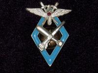 знак 9 военной школы летчиков и летнабов ВВС РККА (копия)