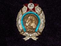 знак ЧОНУ 1918 (Части особого назначения Украины) (копия)