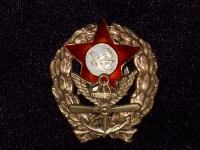 знак командира авиаотряда (копия)
