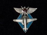 знак Пилот военных авиационных школ ВВС РККА (копия)