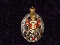 знак В память 300-летнего юбилея Донского Казачьего Войска (копия)