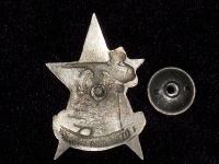 знак За отличную стрельбу, с 1928 г. (копия)